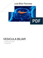 Vesicula Biliar y Pancreas UVERSION