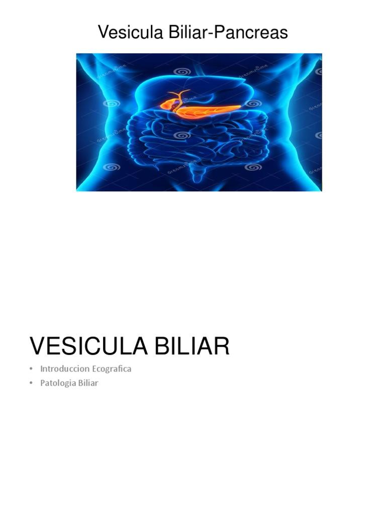Vesicula Biliar y Pancreas UVERSION
