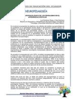 Artículo ''Análisis Neuropsicológico de Los Problemas en El Aprendizaje Escolar''