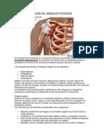 lesión del manguito rotador.docx
