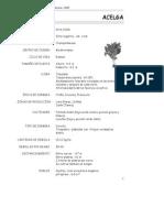 3-p1 a p14 (de acelga a apio).pdf