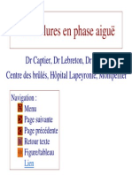 MIF 201 Cours Externe Brulure