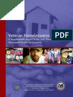 2010 a Har Veterans Report