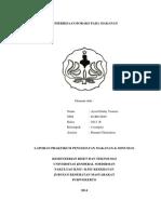 laporan boraks fix.docx