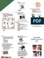 Leaflet Dm Anti