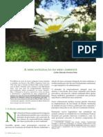 A mercantilização do meio ambiente_Pinto.pdf