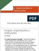 Aula Sara .Grupos, organizações e instituições