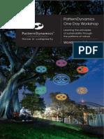 PD_Workshop_Workbook_5thDec Thrive in Complexity Version1