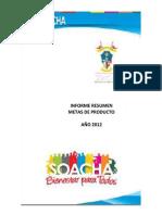 Informe metas producto 2012