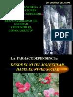 OPIOIDES-2007.ppt