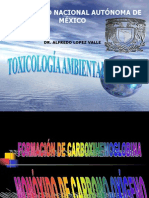 TOXICOLOGIA AMBIENTAL.ppt