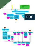 grp52 DHf patho