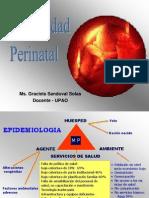 2.mortalidad perinatal