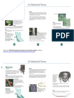 Notes on 15 Selected Trees