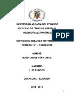 Doc. Taxonoia Del Platano