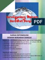 Survey Vektor DHF