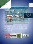 LOS SIG Y LA TELEDETECCION APLICADOS A LA PLANIFICACION LAGUNAR A LA