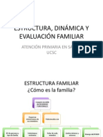 08 Estructura Dinamica y Evaluacion Familiares