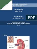 Ureterolithiasis Presentation