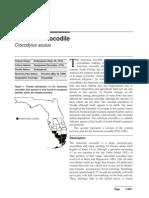 PDF Crocodile