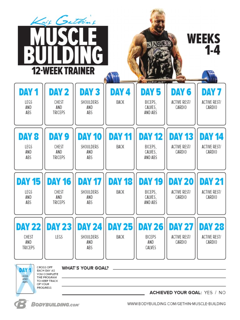 kris gethin 12 week muscle builder day 11
