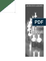 Lucernare_impaginato.pdf