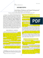 Mitogen-Activated Protein Kinase Pathways and Fungal Pathogenesis.pdf