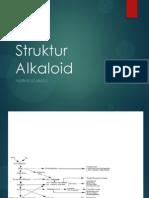 Struktur Alkaloid