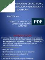 Tecnicas Aislamiento Para Clostridium en Alimentos