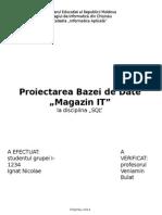 proiect sgbd