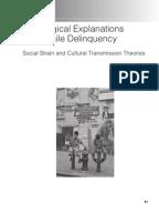 juvenile delinquency midterm essayssociological explanations of juvenile delinquency