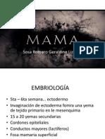 Ca Mama