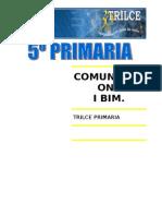 COMUNIC. I BIM.doc