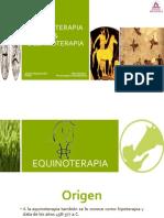 Equinoterapia y Delfinoterapia