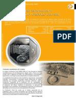 Nueva Moneda de Caral