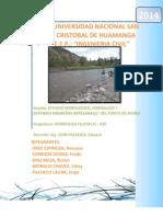 estudio hidrologico del rio watatas