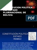Constitucion 2011