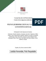 PLENO JURISDICCIONAL NACIONAL PERUANA