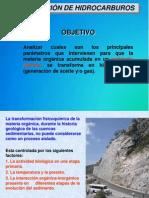 generacion de hidrocarburos.pdf