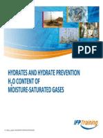 13-H2O CONT OF GASES_33s.pdf