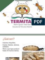 Las Termitas.pptx