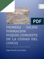 FORMACION PUQUIN