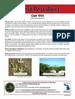 Oak Wilt Advisory