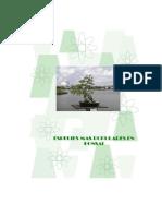 Bonsai - Las especies mas populares.pdf
