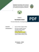 PROCESO Biomimetismo 2014D