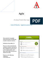 Agile - A View From the Top