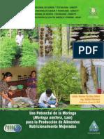 Uso potencial de Moringa oleifera para la producción de alimentos nutricionalmente mejorados