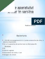 Bolile Aparatului Urinar in Sarcina