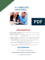 A1 TEORÍA GESTION Y DIRECCION ORGANIZACIONAL.docx