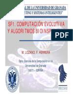 Presentación computacion bioinspirada